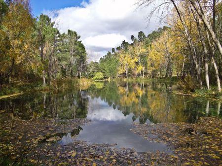 Parque Natural Calares del Mundo y de la Sima 8