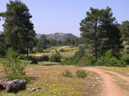 Parque Natural Calares del Mundo y de la Sima 1