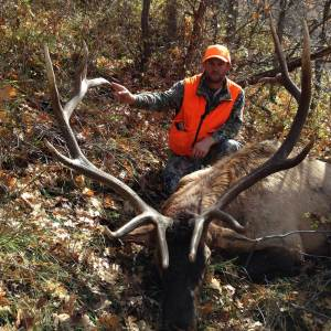 colorado elk hunting