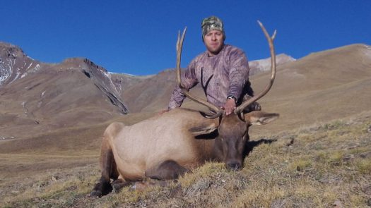 Wilderness Rifle Bull