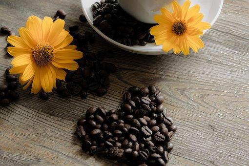 utilisation du café