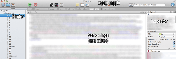 The basic Scrivener view.
