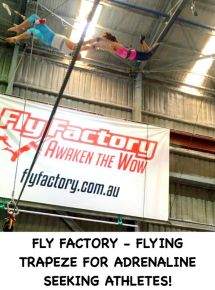 Fly Factory - Flying Trapeze for Adrenaline Seeking Athletes!