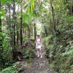 Plan your vacation with Active Caribbean Travel – The best islands to hike etc… Activities, Adventures and Things to do