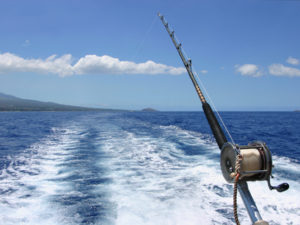 Plan your vacation with Active Caribbean Travel – The best fishing spots and boat operators in Jamaica, plus general island info. Plan your trip today!
