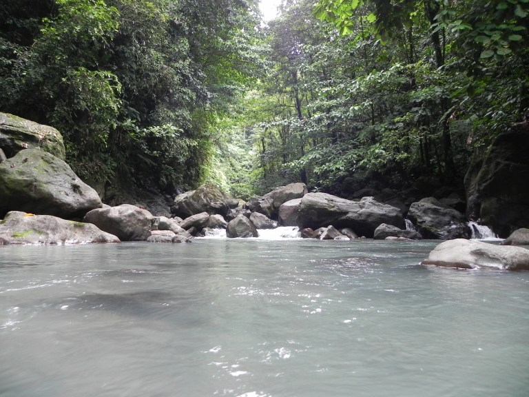 Image result for Victoria Falls dominica
