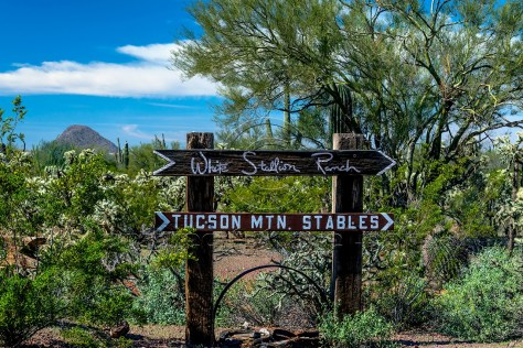 White Stallion Ranch, Tucson Arizona photo credit: John Cameron