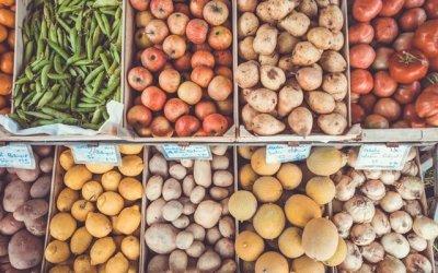 Saturday Farmer's Market Guide