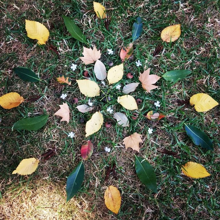 Nature Mandala And Mobile Workshop Carlton Gardens Active In Parks