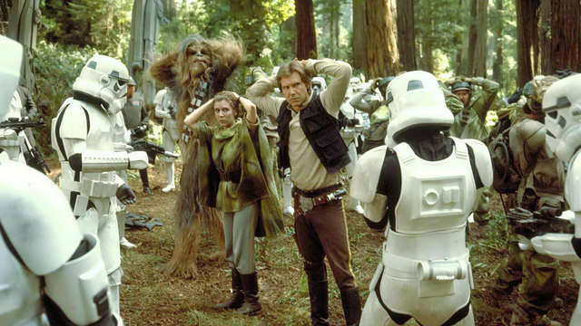 Image result for return of the jedi ewok forest