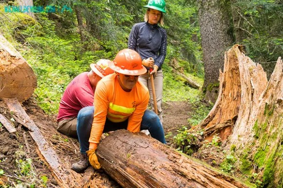 Trail crew on PCT near Government Meadow and Ulrich Cabin