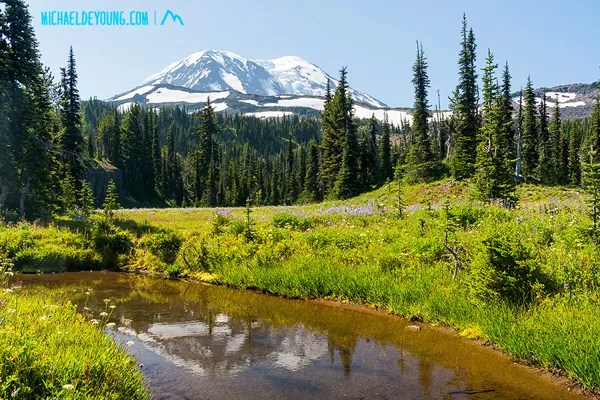 PCT in Mount Adams Wilderness, Washington