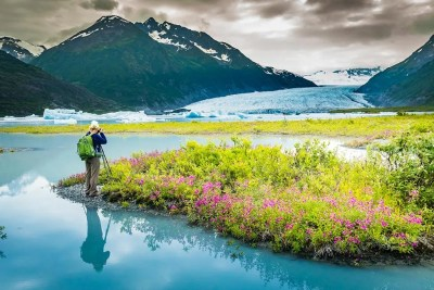 Photograph landscapes with dwarf fireweed (river beauty) © Michael DeYoung