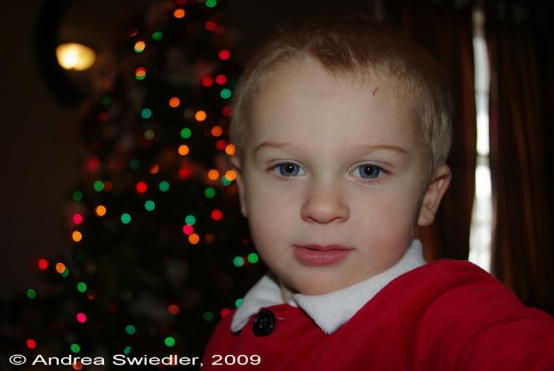Merry Christmas Cailan