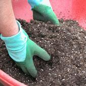 gardening in Woodstock