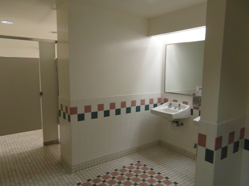 Commercial Bathroom Color Consult Before Pictuer