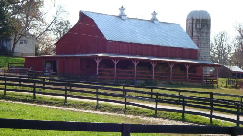 Roedown Farm