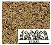 Frieze Carpet FYI