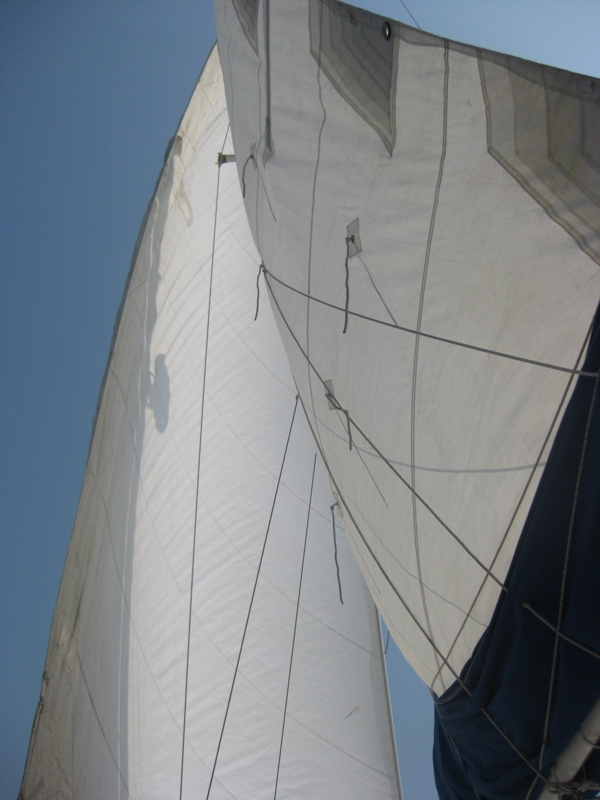 sails are up