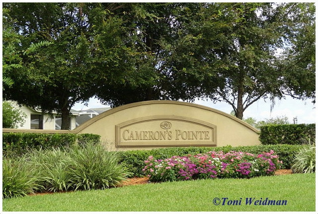 Cameron's Pointe in Fox Wood, Trinity FL