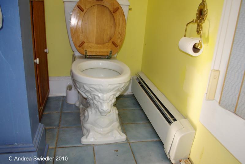 Fancy toilet