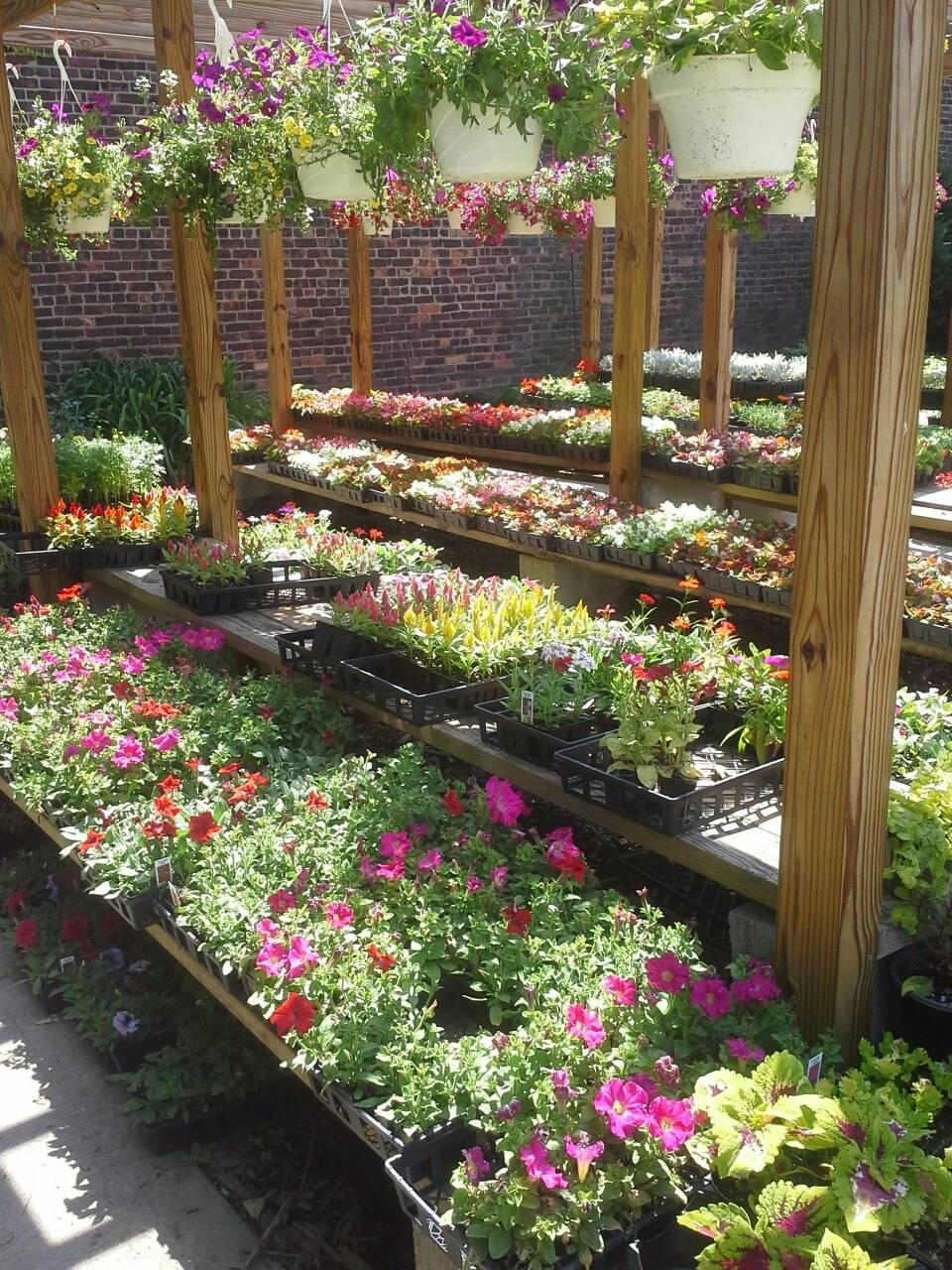 Things To Do in Brooklyn, garden stores in brooklyn