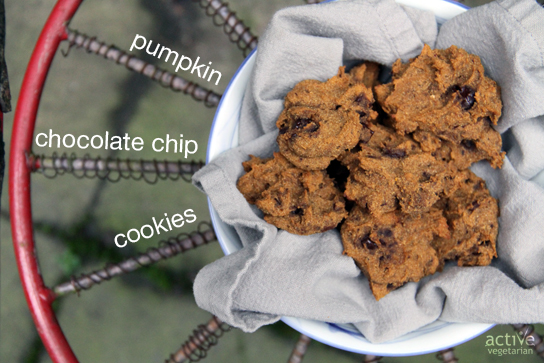 Pumpkin Chocolate Chip Cookies-text