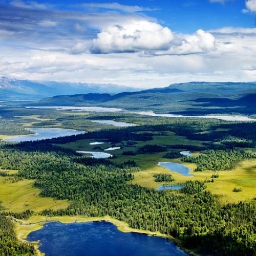 Wyjazdy na Alaskę