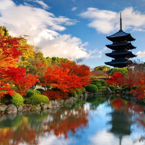 Wyjazdy do Japonii