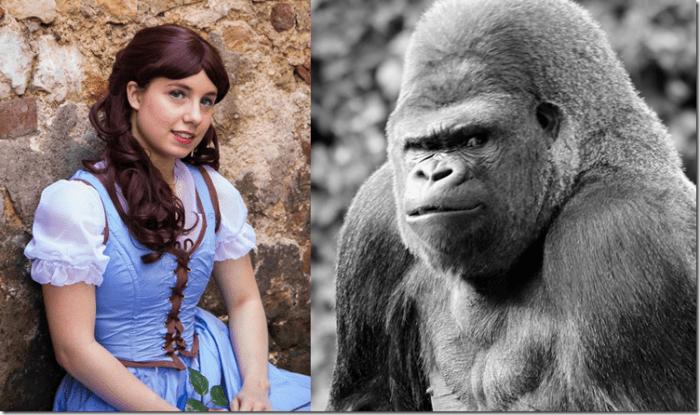 Jeu touche-touche Gorille Princesse