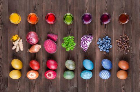 activité colorer oeufs pâques