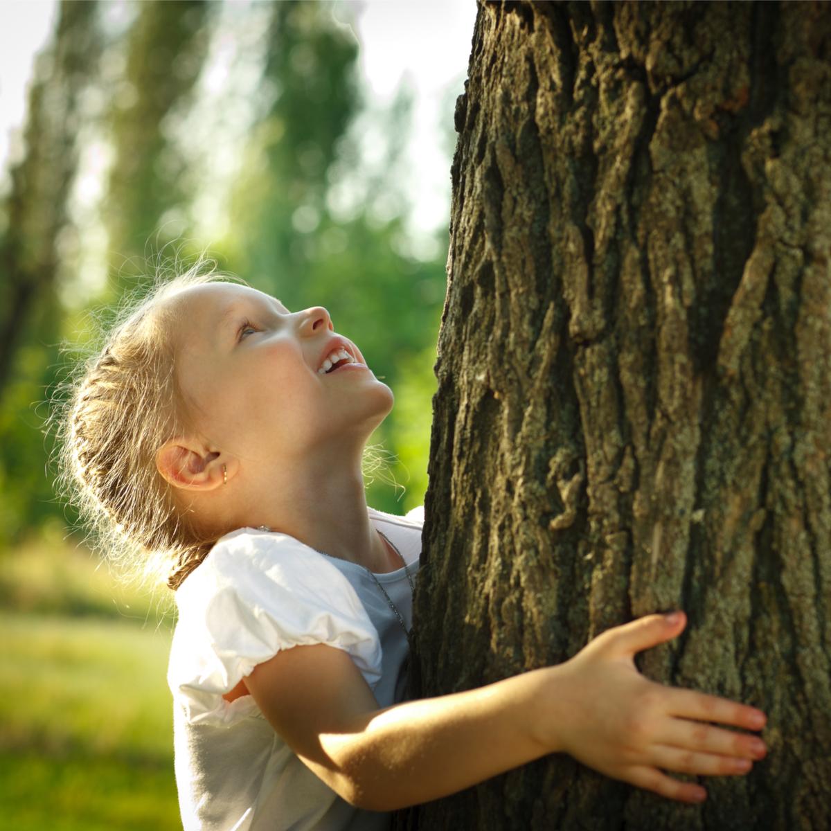 thérapie arbres
