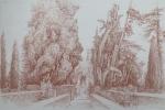 Les grands cyprés de la villa d'Este 72 dpi