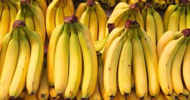 Cita bananera ACORBAT, postergada para septiembre próximo