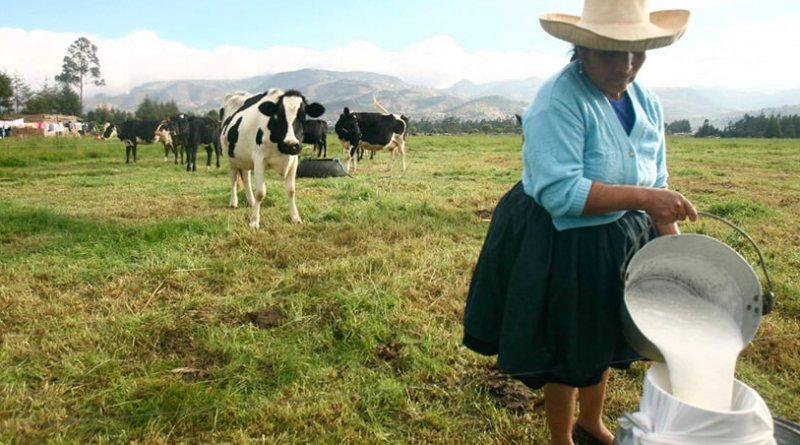 INFORME ESPECIAL: Industria millonaria con ganaderos pobres