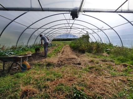 Habilitando nuevas zonas de cultivo