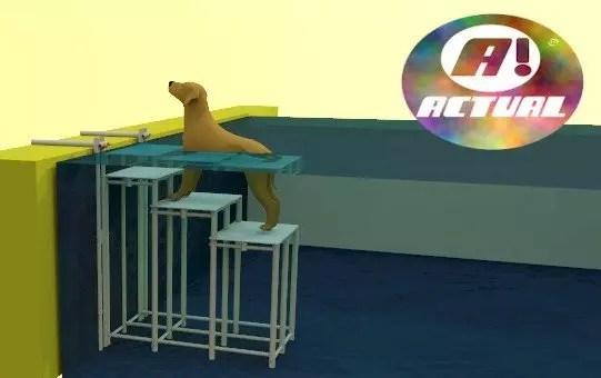 Escada de piscina para Pet com 3 degraus