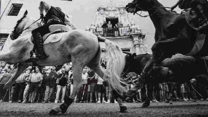Premio categoría entrada de toros y caballos - Instante