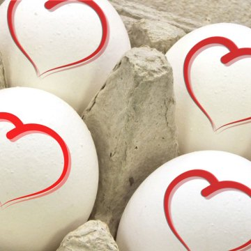 Consumo de huevo y enfermedades cerebrovasculares no tienen relación, asegura estudio