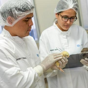 CONCYTEC aprueba por segundo año consecutivo proyecto de investigación y desarrollo presentado por QUIMTIA S.A.