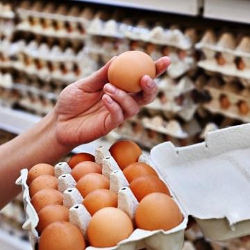 México es el mayor consumidor de huevo en el mundo
