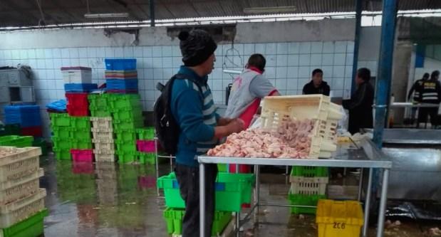 Intervinieron avícola informal donde se inyectaba pollo con agua