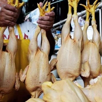 Demanda por pollo crece lentamente