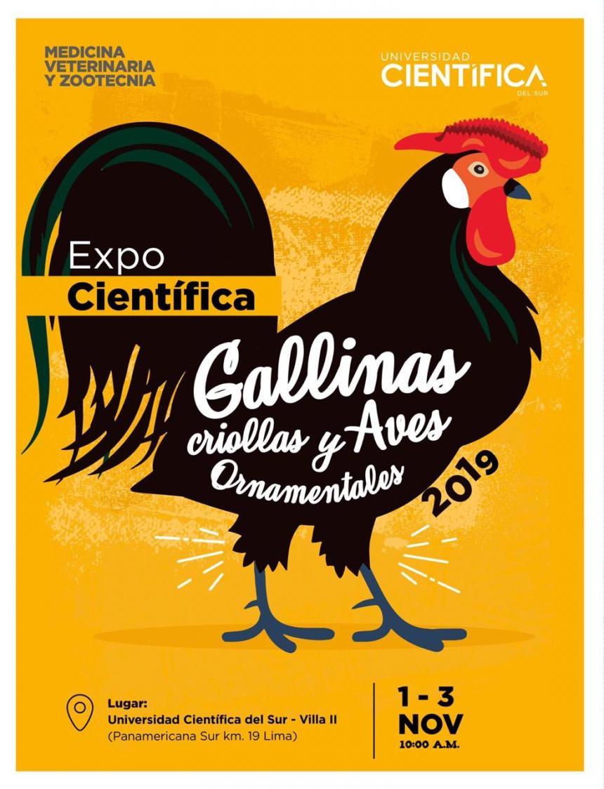 Exposición de Gallinas y Aves Ornamentales se realizará en Lima