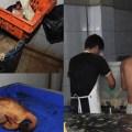 Avícola informal fue clausurada en Villa El Salvador