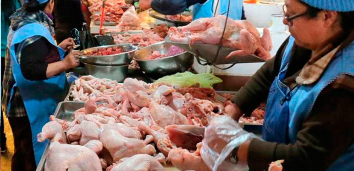 Avícolas bolivianas prevén abastecimiento de carne de pollo