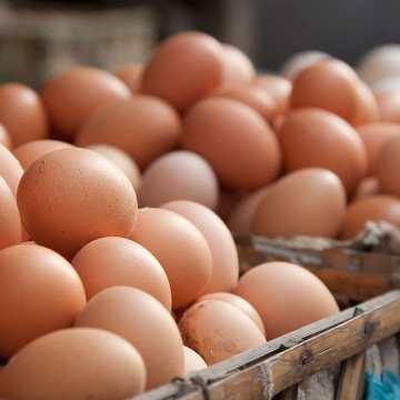 Producción de huevos en Venezuela va en aumento