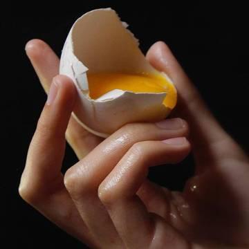 Escasez de pienso afecta producción de huevos en Cuba