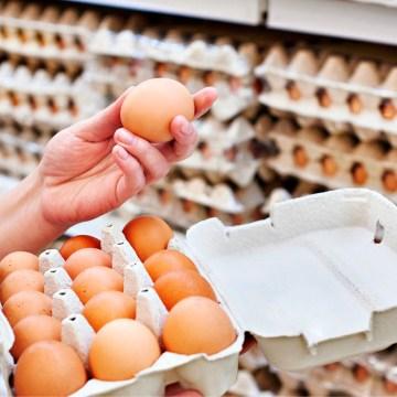 Brasil: la exportación del huevo disminuye