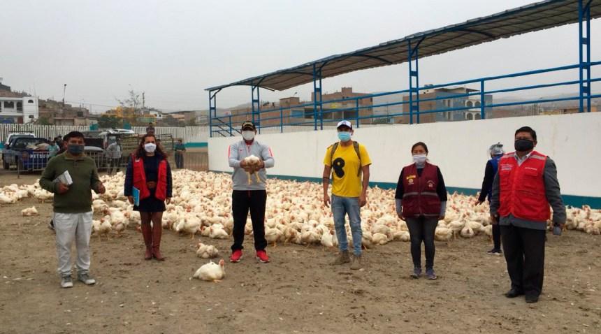 Familias vulnerables de Pachacámac recibieron donación de 4,800 pollos a través de Red de Soporte Amachay del distrito